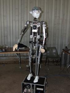 nl_robot